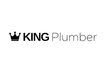 tulsa-business-coach-case-study-king-plumber